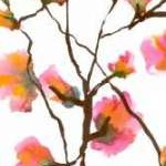 Inky Blossoms I Digital Print by Velasquez, Deborah,Decorative