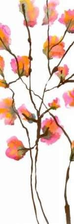 Inky Blossoms I Digital Print by Velasquez, Deborah,Decorative