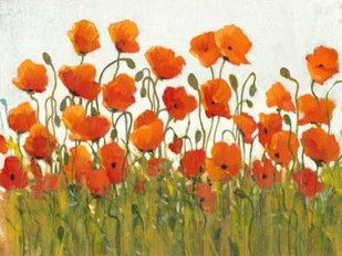 Rows of Poppies I Digital Print by O'Toole, Tim,Decorative