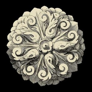 Black and Tan Rosette II Digital Print by Vision Studio,Decorative