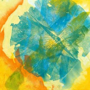 Lotus Monotype II Digital Print by Roth, Carolyn,Abstract