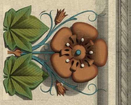 Floral Detail I Digital Print by Vision Studio,Decorative