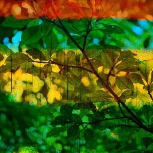 Abstract Leaf Study I Digital Print by Jasper, Sisa,Impressionism