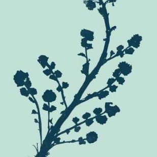 Indigo And Mint Botanical Study II Digital Print by Vision Studio,Decorative