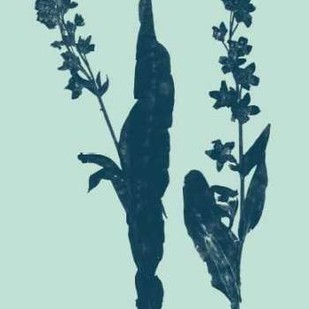 Indigo And Mint Botanical Study VIII Digital Print by Vision Studio,Decorative