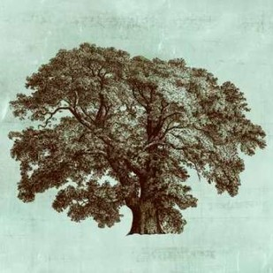 Spa Tree II Digital Print by Vision Studio,Decorative