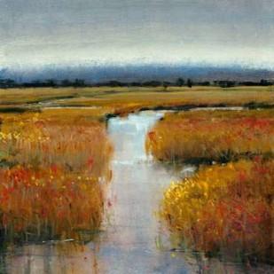 Marsh Land II Digital Print by O'Toole, Tim,Impressionism