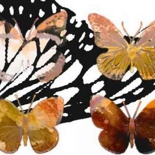 Layered Butterflies III Digital Print by Jasper, Sisa,Decorative