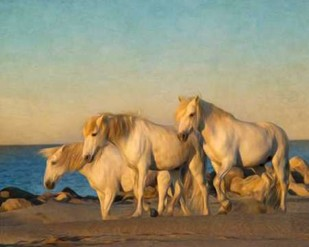 On the Beach Digital Print by PHBurchett,Realism