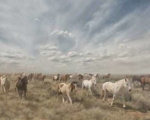 Big Sky Digital Print by PHBurchett,Realism