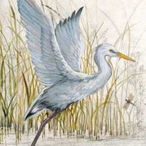 Heron Sanctuary I Digital Print by O'Toole, Tim,Impressionism