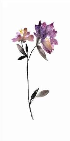 Floral Watercolor III Digital Print by Mosley, Kiana,Decorative