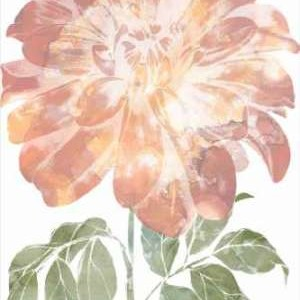 Watercolor Bloom II Digital Print by Goldberger, Jennifer,Decorative