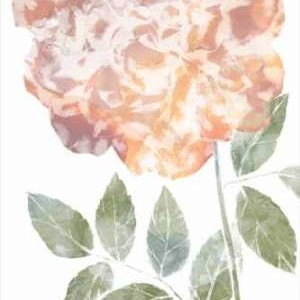 Watercolor Bloom III Digital Print by Goldberger, Jennifer,Decorative