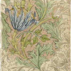Floral Pattern Study III Digital Print by Harper, Ethan,Decorative