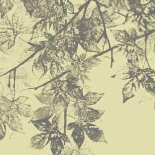 Grey Leaves II Digital Print by Goldberger, Jennifer,Decorative