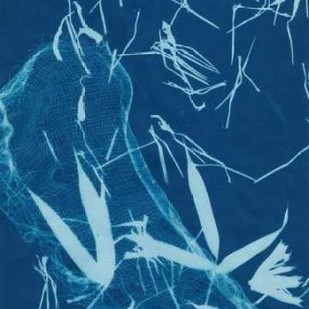 Cyanotype No.5 Digital Print by Stramel, Renee W.,Decorative
