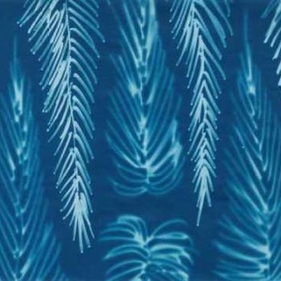 Cyanotype No.7 Digital Print by Stramel, Renee W.,Decorative
