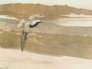 Soaring Digital Print by Sutton, George,Impressionism