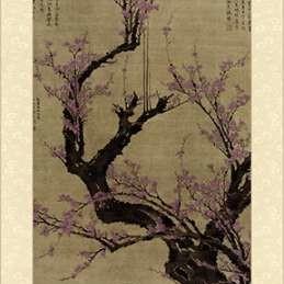 Plum Blossom Tree Digital Print by Vision Studio,Decorative