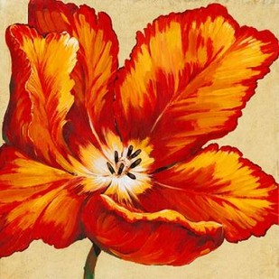 Parrot Tulip I Digital Print by O'Toole, Tim,Decorative