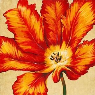 Parrot Tulip II Digital Print by O'Toole, Tim,Decorative