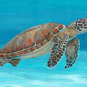 Ocean Sea Turtle I Digital Print by O'Toole, Tim,Decorative