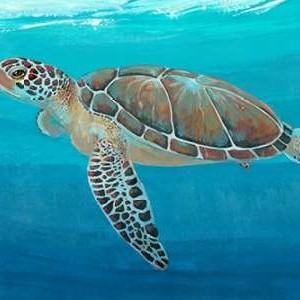 Ocean Sea Turtle II Digital Print by O'Toole, Tim,Decorative