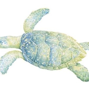 Tranquil Sea Turtle II Digital Print by Meagher, Megan,Impressionism