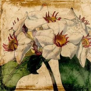 Vibrant Floral VI Digital Print by Vision Studio,Decorative