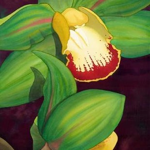 Lime Orchid II Digital Print by Higby, Jason,Decorative