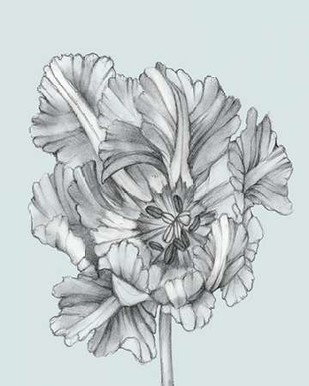 Silvery Blue Tulips I Digital Print by Goldberger, Jennifer,Illustration