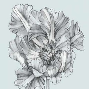 Silvery Blue Tulips I Digital Print by Goldberger, Jennifer,Illustration