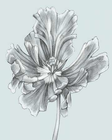Silvery Blue Tulips III Digital Print by Goldberger, Jennifer,Illustration