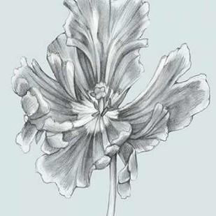 Silvery Blue Tulips III Digital Print by Goldberger, Jennifer,Illustration