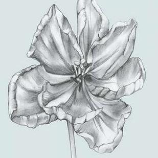Silvery Blue Tulips IV Digital Print by Goldberger, Jennifer,Illustration