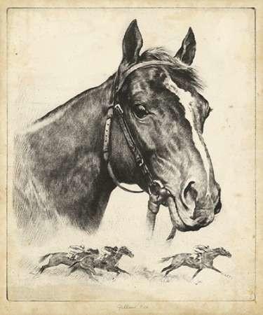 Gallant Fox Digital Print by Palenske, R.H.,Illustration