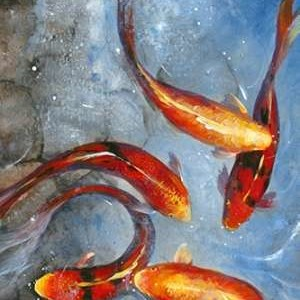 Graceful Koi I Digital Print by O'Toole, Tim,Decorative