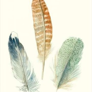 Watercolor Feathers IV Digital Print by Marie, Meg,Impressionism