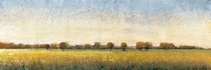 Flowering Meadow I Print By O'Toole, Tim