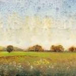 Flowering Meadow II Digital Print by O'Toole, Tim,Impressionism