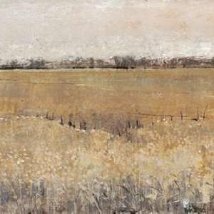 Fenced In II Digital Print by O'Toole, Tim,Impressionism