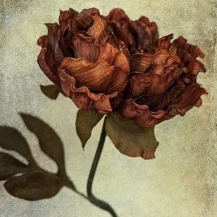 Lush Vintage Florals V Digital Print by Malek, Honey,Impressionism