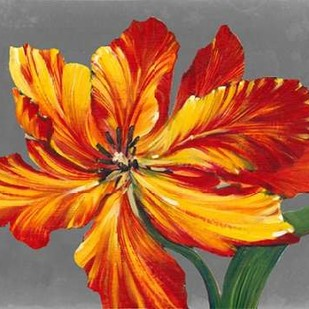 Tulip Portrait I Digital Print by O'Toole, Tim,Impressionism