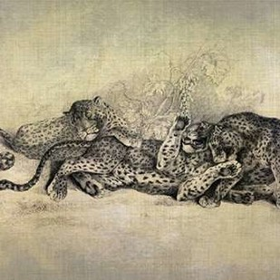 Big Cats I Digital Print by Butler, John,Decorative