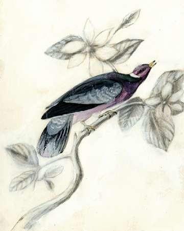 Rustic Aviary I Digital Print by McCavitt, Naomi,Decorative