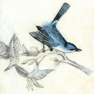 Rustic Aviary III Digital Print by McCavitt, Naomi,Decorative