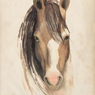 Watercolor Animal Study V Digital Print by Popp, Grace,Decorative