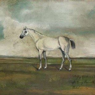 A Grey Hunter in a Landscape Digital Print by McCavitt, Naomi,Impressionism