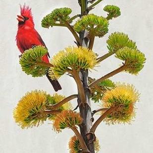 Avian Tropics I Digital Print by Vest, Chris,Decorative